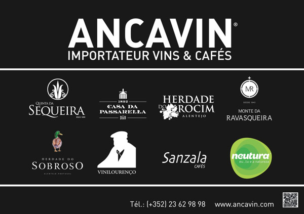 print_Ancavin3