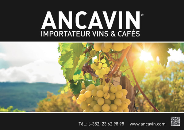 print_Ancavin4